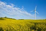 Udział energii odnawialnej w Polsce jest zbyt mały