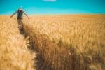 Lockdown podbija koszty rolnikom